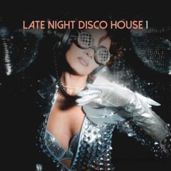 Late Night Disco House- /vol- 1/