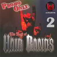 Promo Only Hair Bands [02]