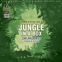 Jungle In A Box (2019) торрент