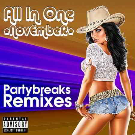 Partybreaks and Remixes - All In One November 005