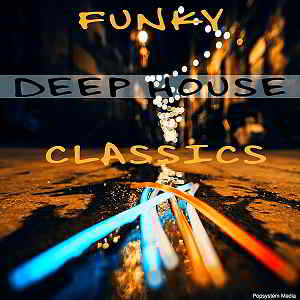 funky house torrent