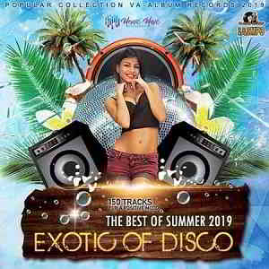 Exotic Of Disco: The Best Of Summer (2019) торрент