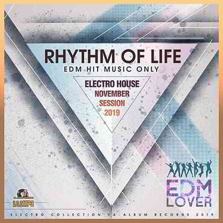 Rhythm Of Life: Electro House Session