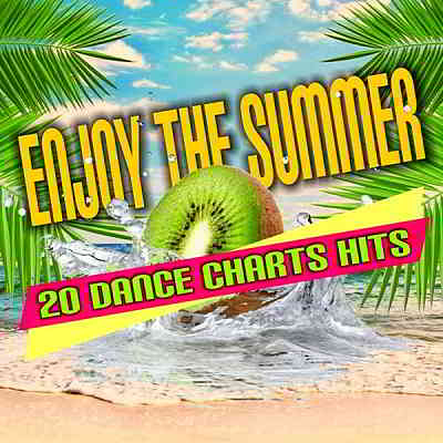Enjoy The Summer: 20 Dance Chart Hits