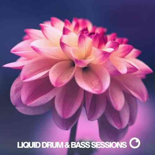 Liquid Drum & Bass Sessions: Vol 9 [WEB] (2021) торрент