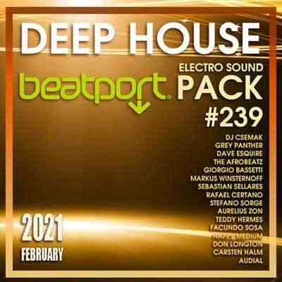 Beatport Deep House: Electro Sound Pack #239