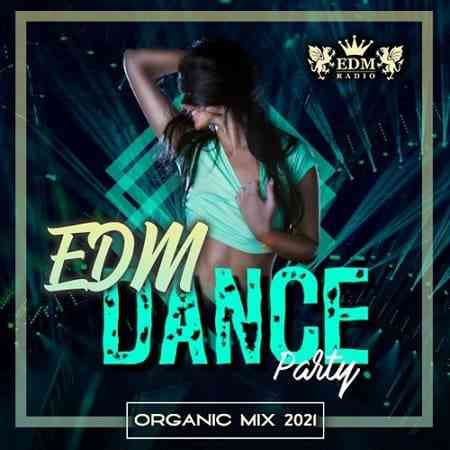 Organic EDM Dance Party (2021) торрент